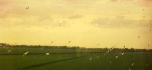 Pemandangan senja di kereta